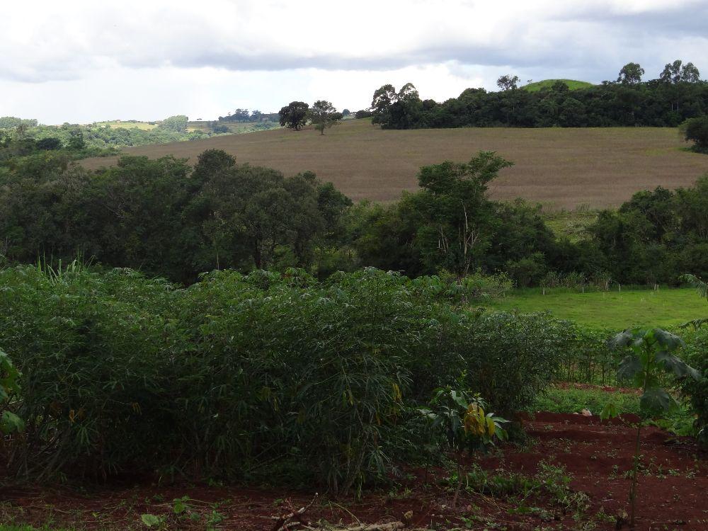 Imagem10:Área Rural para Venda em Arapongas